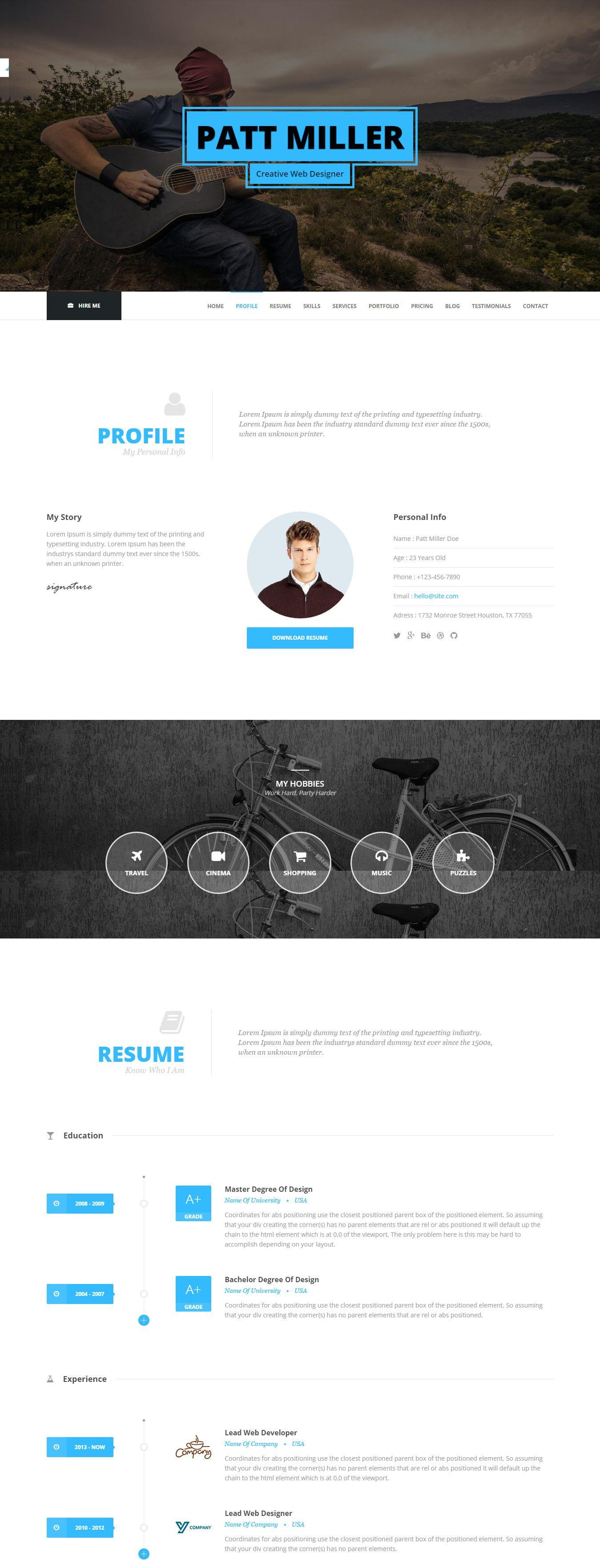 Top 15 Resume Website Templates (in WordPress) Online