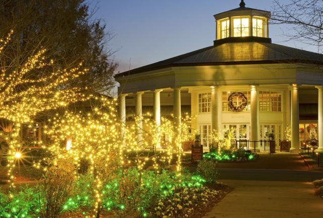1a8cd7e44d3348999103c0bd296ac21d - Botanical Gardens Christmas Lights Charlotte Nc