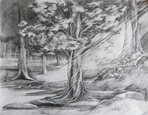 Forest pond drawing google search vol 1 landscape for Forest scene drawing