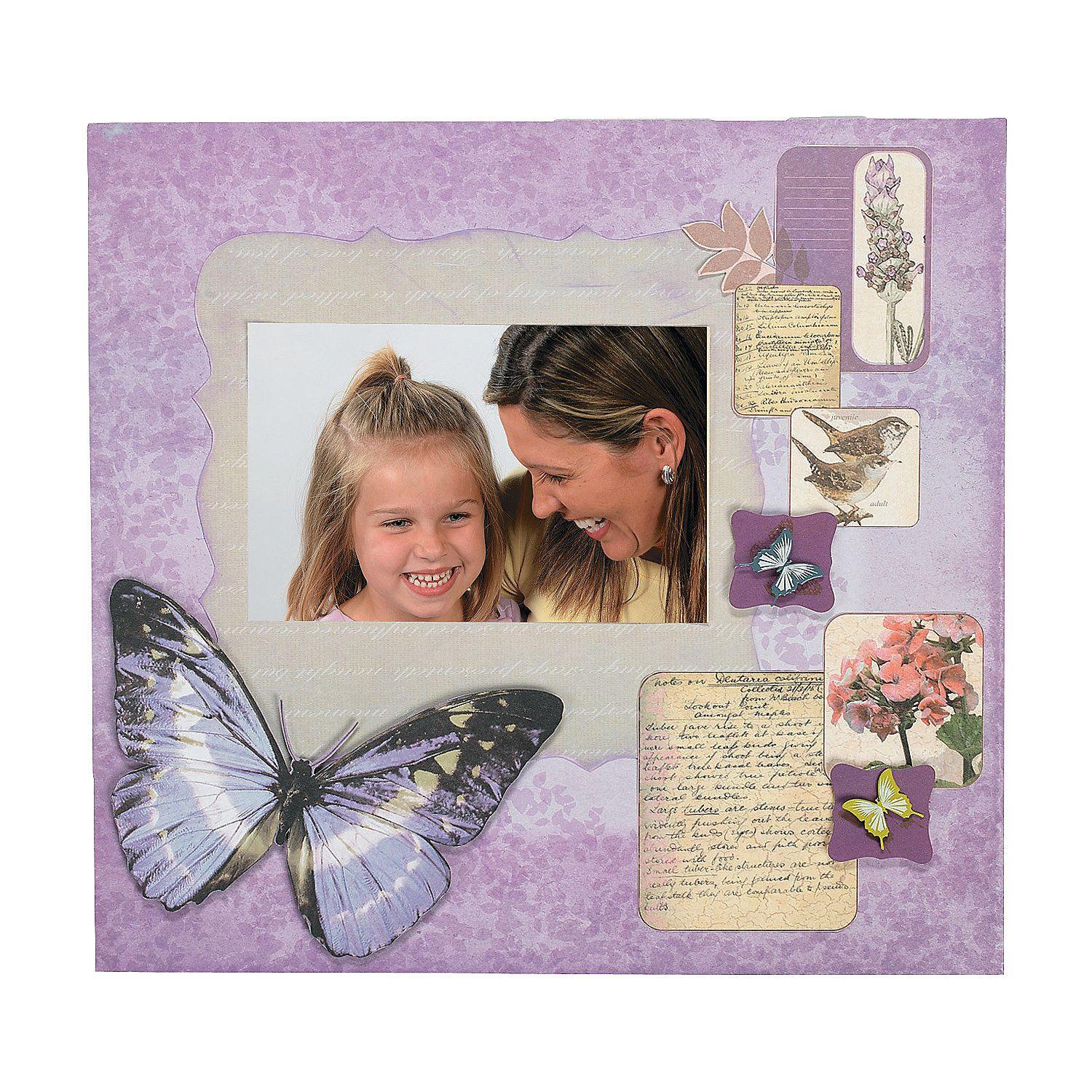 Natural butterfly scrapbook collection orientaltrading take a cue from mother nature and make your scrapbook pages and paper crafts bloom with color and natural beauty using this excellent collection jeuxipadfo Images