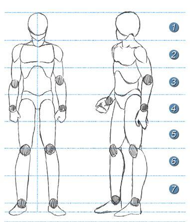 Resultado De Imagen Para Canones Manga Proporciones Proporciones Del Cuerpo Humano Como Dibujar Cuerpos Bocetos Del Cuerpo Humano