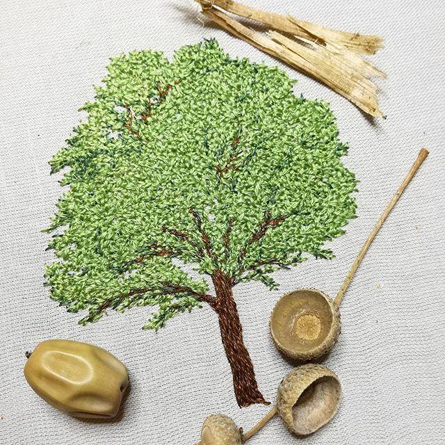 Et finit !   #chêne #oak #foret #forest #greenlife #simple - motive f r k chenr ckwand