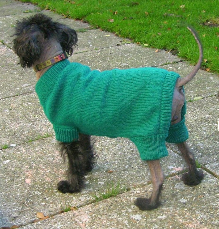 Onesie 4 legged sweater jumper for small dogs machine knitting onesie 4 legged sweater jumper for small dogs machine knitting pattern by scanthecat on etsy bankloansurffo Gallery