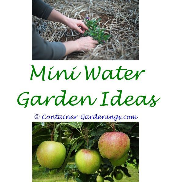 Garden Flower Plants | Garden ideas, Gardens and Garden design ideas uk