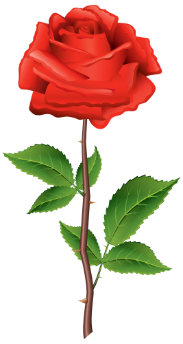 stem red rose png clipart kwiaty pinterest rose clip art and rh pinterest com rose pictures clipart single rose images clipart