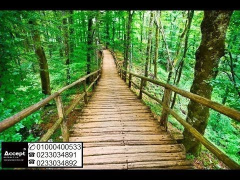 ورق حائط ثلاثي الابعاد مناظر طبيعية Wood Backdrop Photography Scenery Wallpaper Vinyl Photo Backdrops