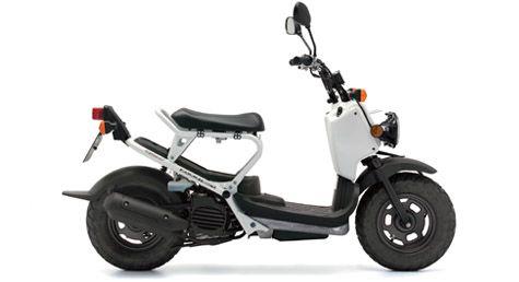 Honda Zoomer Nps 50 For A Really Nice Drive Honda Motorcycle