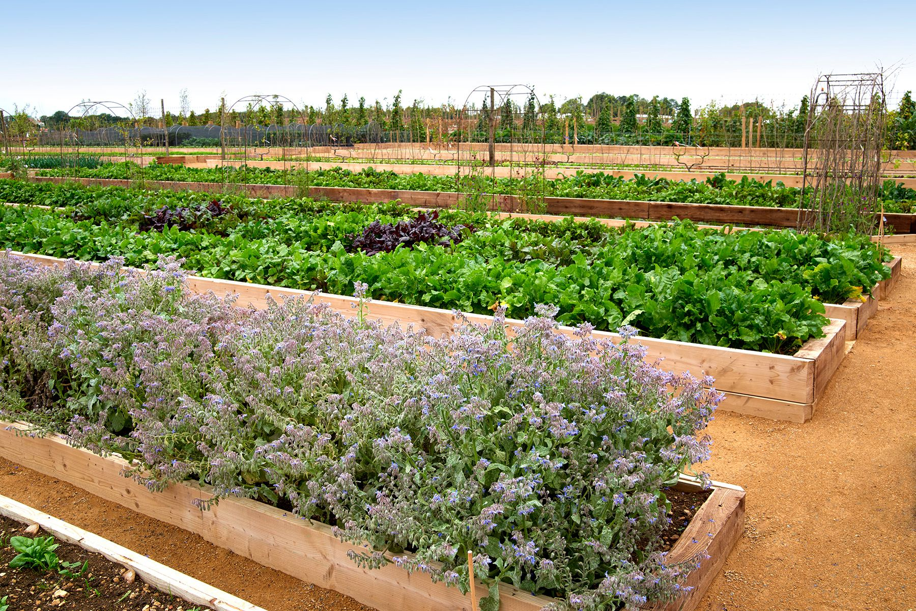 soho farmhouse kitchen garden garden pinterest