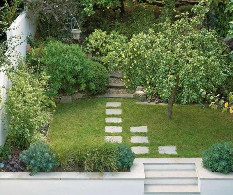 gartengestaltung obstbäume kleinen garten anlegen - obstbaum und exotische immergrüne