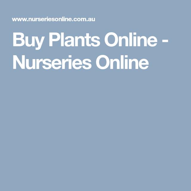 Plants Online Nurseries