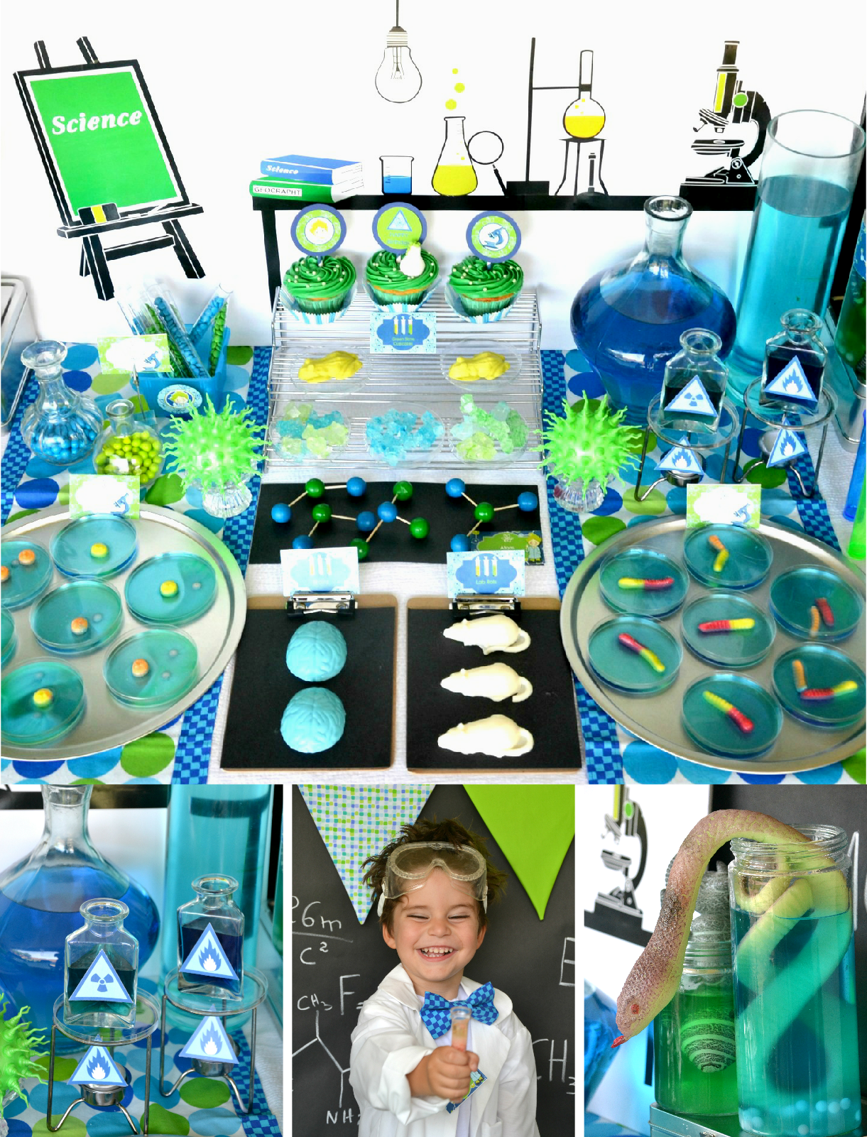 Mad Scientist Science Birthday Party Ideas In