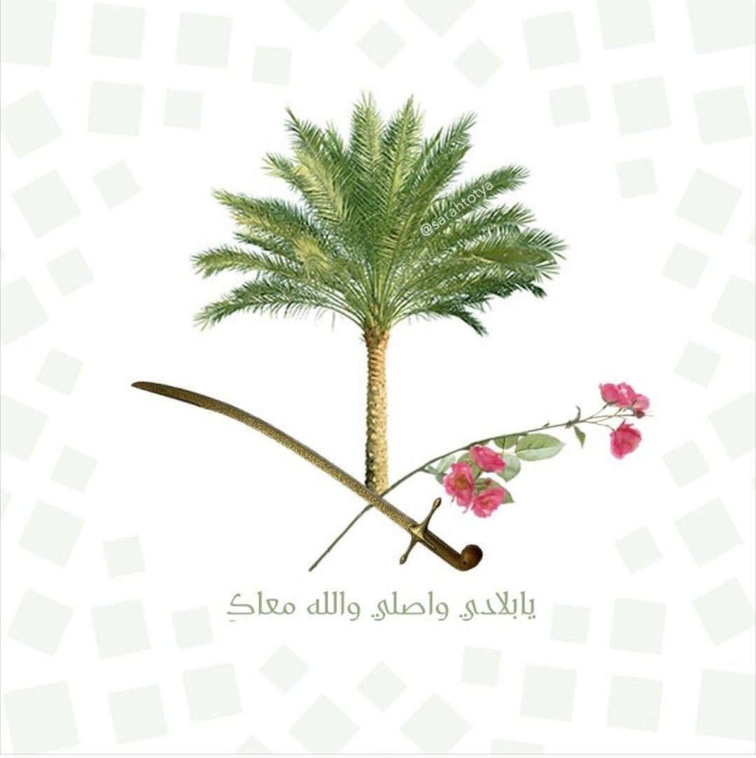 Pin By Najd On بلادي الغاليه National Day Saudi National Day Saudi Flag