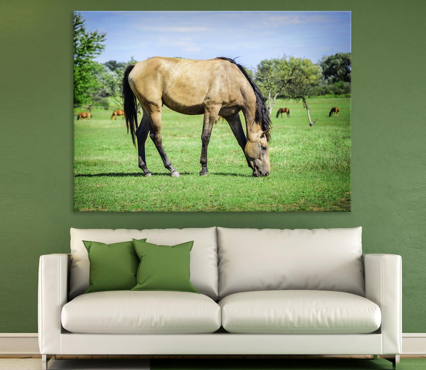 Canvas print horse grazes on a green pasture canavs photoprint