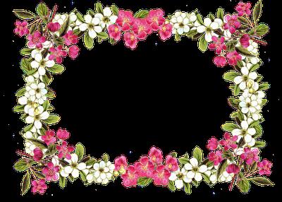 pretty pink border floral - photo #3