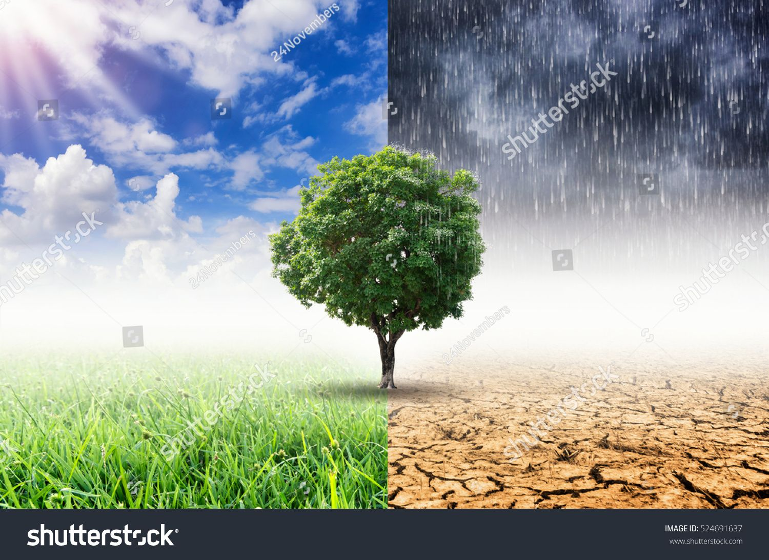Plants And Climate Change With The Concept Of Global Warming