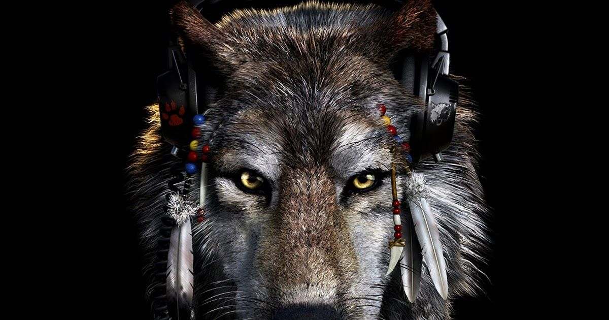 16 Dark Wolf Iphone Wallpaper Dark Wolf Wallpaper 63 Images Wolf Background Black Wallpaper Ipho In 2020 Black Wallpaper Iphone Dark Iphone Wallpaper Wolf Wallpaper
