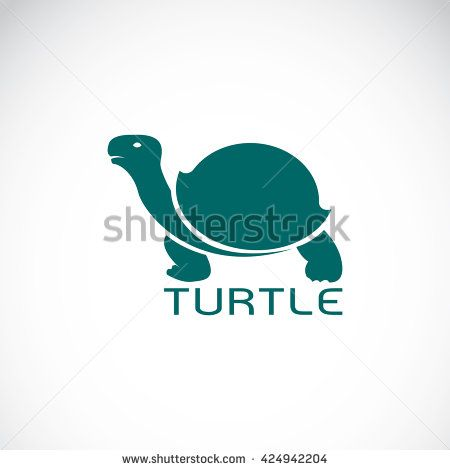 Vector image of an turtle design on white background ...