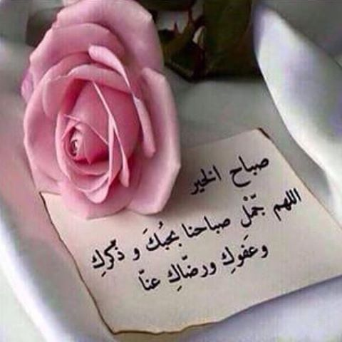 Donya Imraa دنيا امرأة On Instagram صباح الخير والثقة بالرحمن صباح الخير يوم جديد يو Good Morning Arabic Beautiful Birthday Cards Good Morning Messages