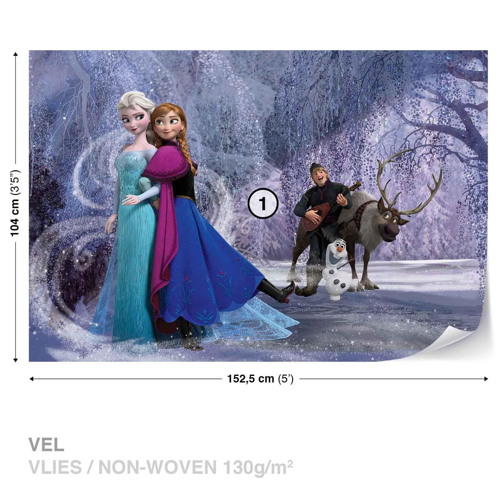 Disney Frozen Elsa Anna WALL MURAL PHOTO WALLPAPER DK