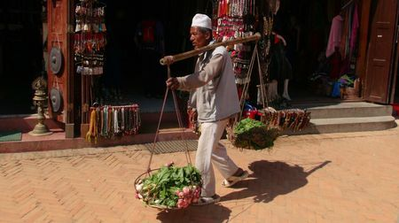 Farmer lifestyle Photo by Rajendra Thapa -- National Geographic Your Shot