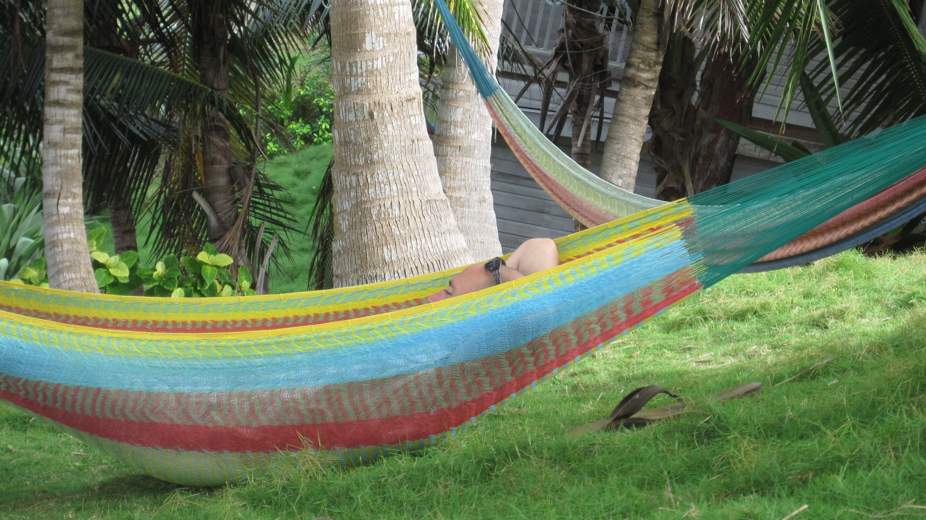 high above bathsheba beach on barbados' wild coast, hammocks are