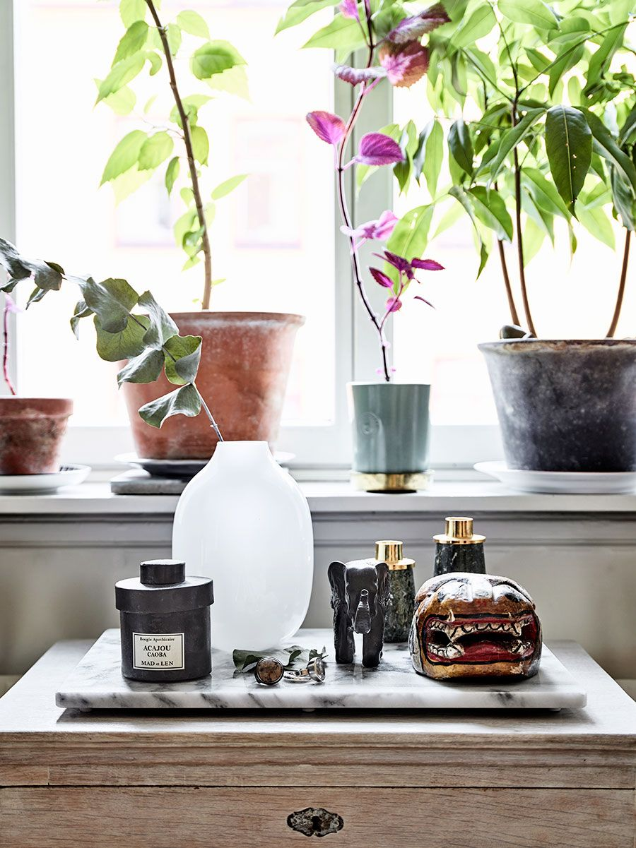 Photo of Look into Amelia Widell's magical home
