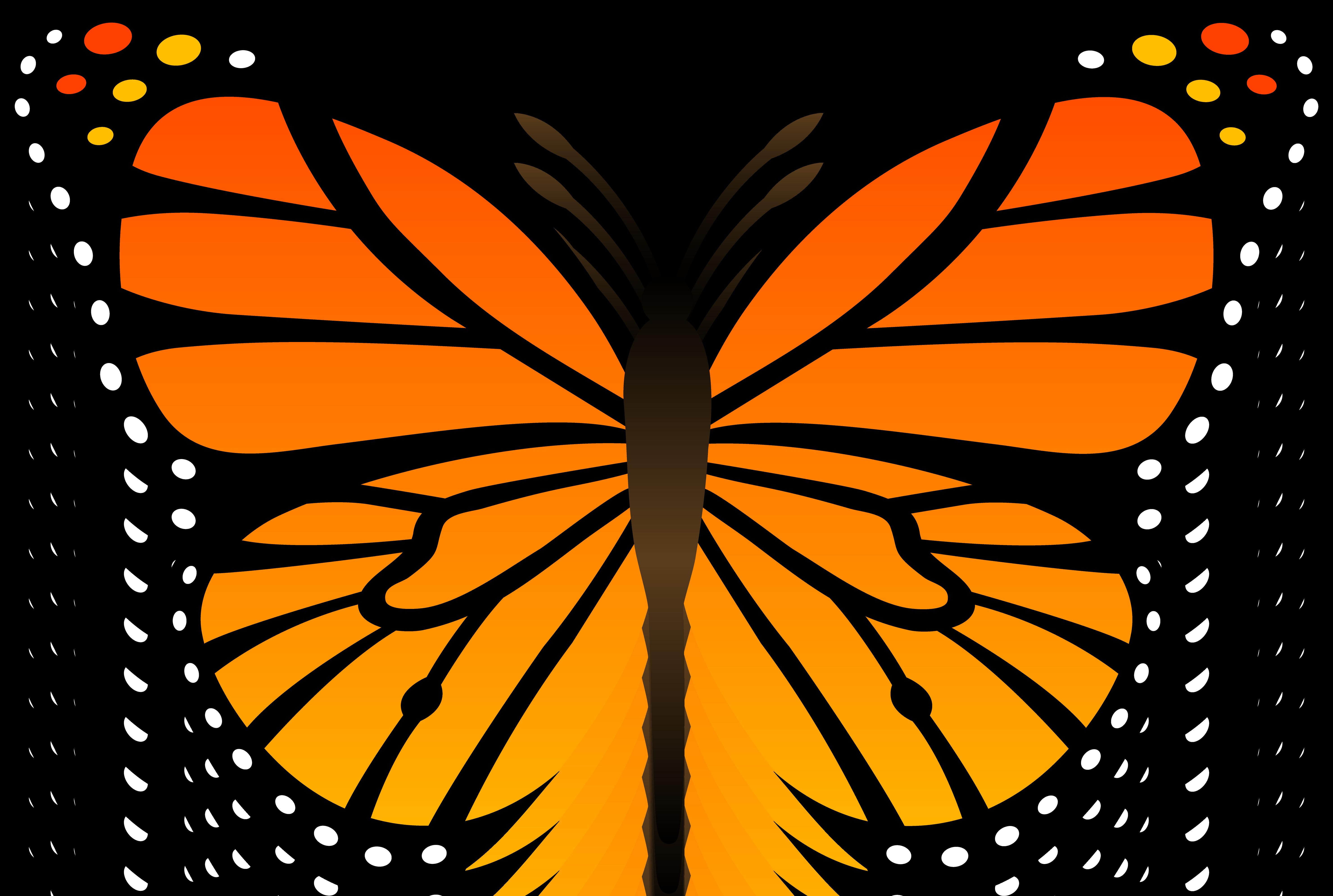 Monarch Butterfly Butterfly Clip Art Butterfly Outline Butterfly Stencil [ 3982 x 5920 Pixel ]