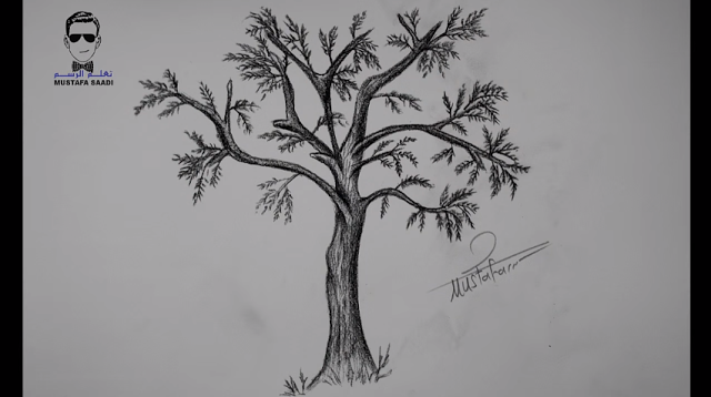 تعلم رسم شجرة بالرصاص خطوة بخطوة للمبتدئين Open Book Drawing Book Drawing Drawings