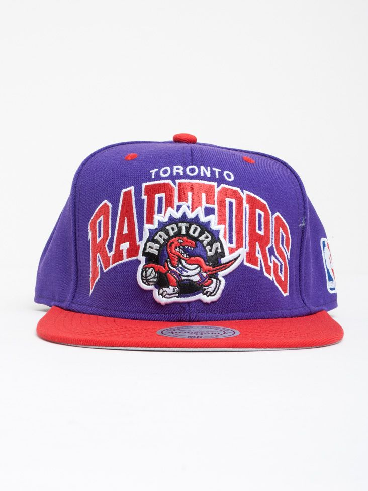 Team Arch Snapback Toronto Raptors  142d3eafa090