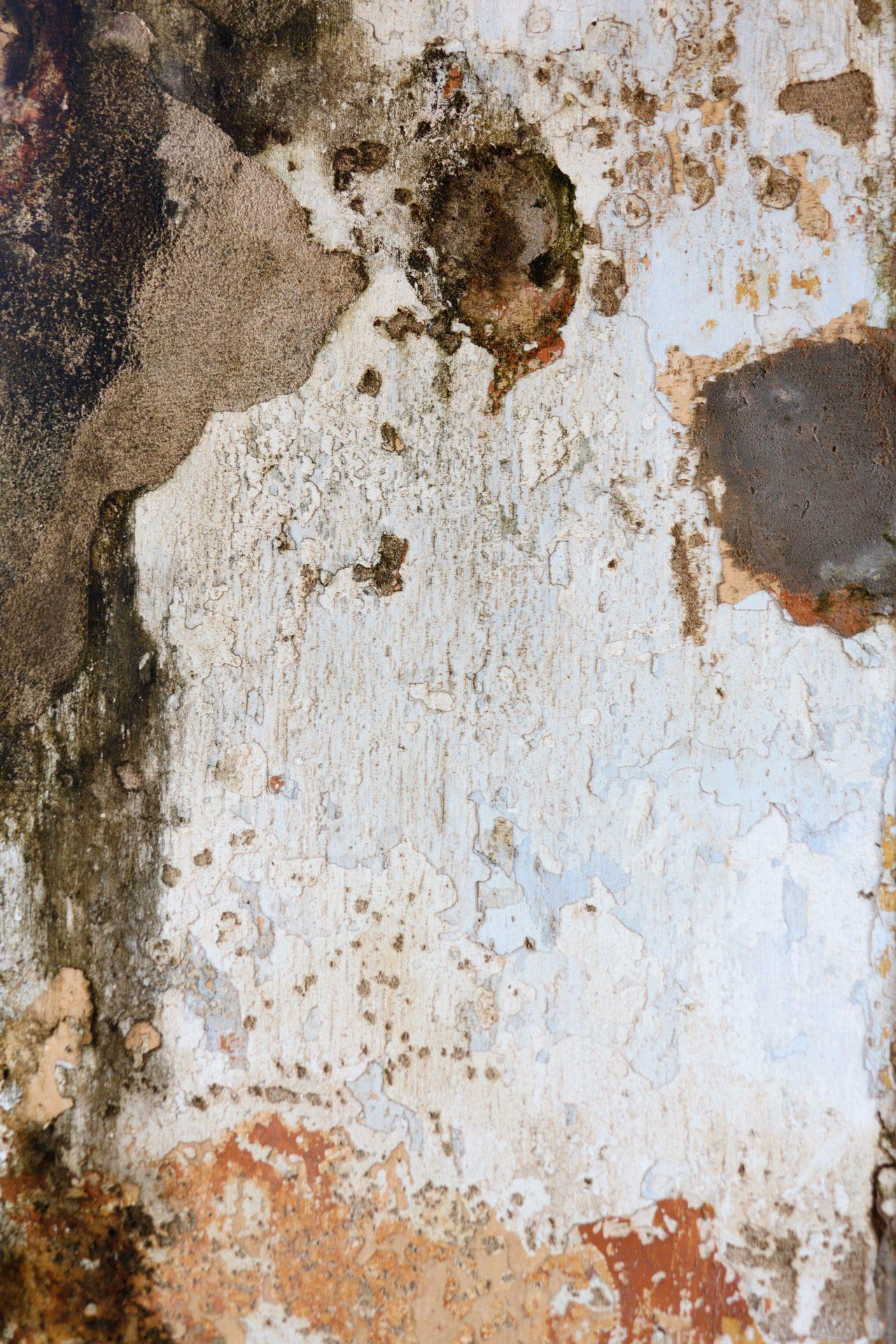 Ecco come rimuovere l'umidità dalle pareti con un semplice ...