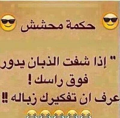 حكمة محشش Laughing Quotes Beautiful Arabic Words Funny Quotes