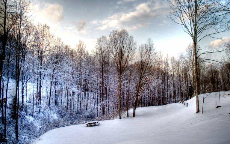 Pretty Winter Pictures Free Download Winter Snow Wallpaper