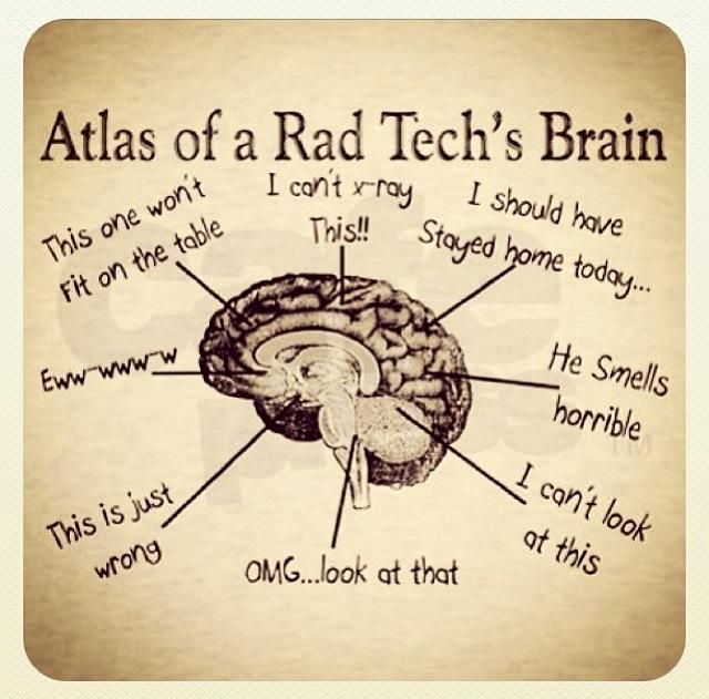X Ray Tech Quotes Quotesgram By Quotesgram