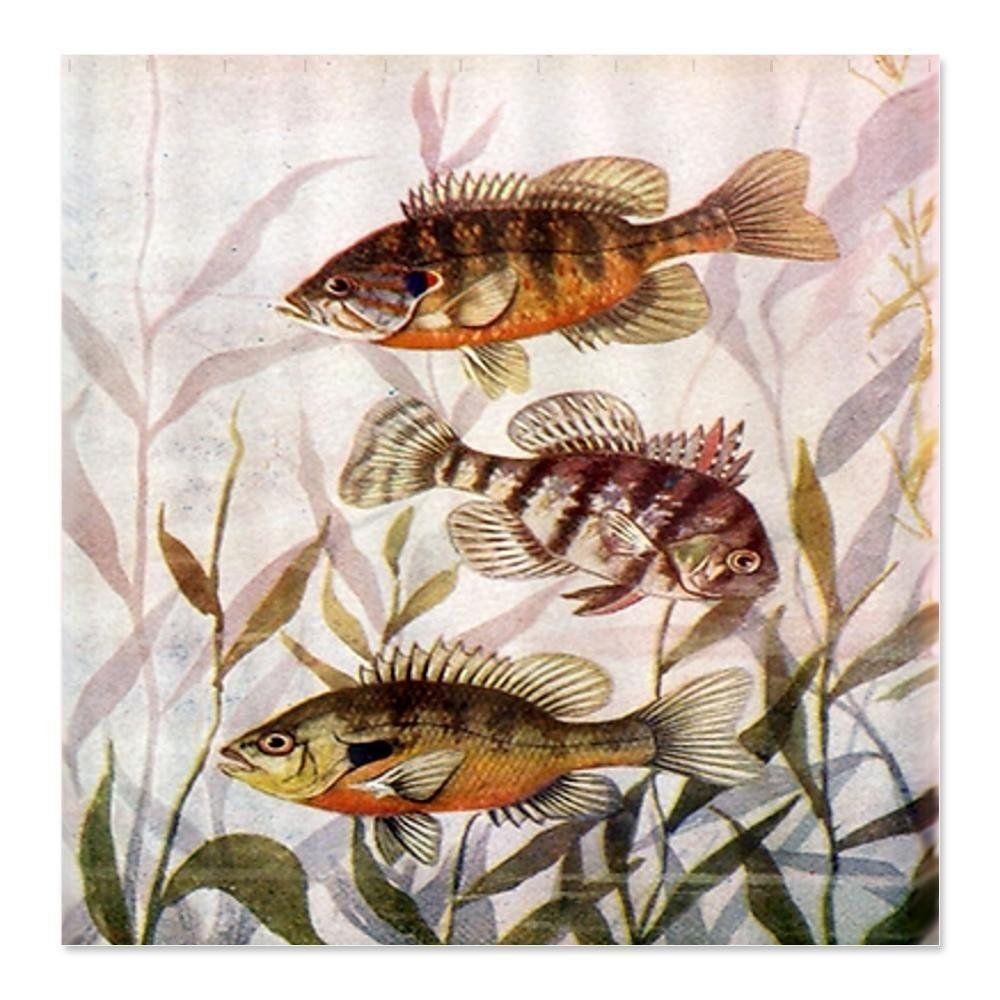 Vintage Fish Scene Shower Curtain