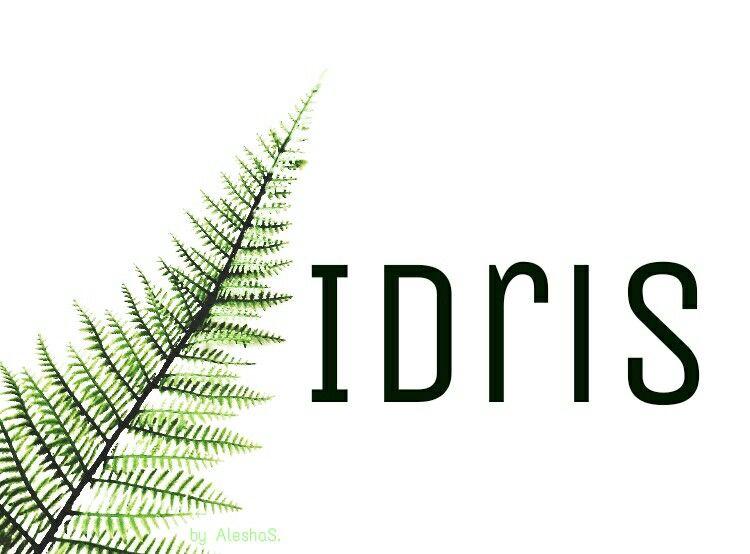 Idris / Welsh: lord