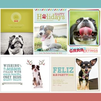Brand Sushi Dog Themed Holiday Card Templates For 2012 So Cute