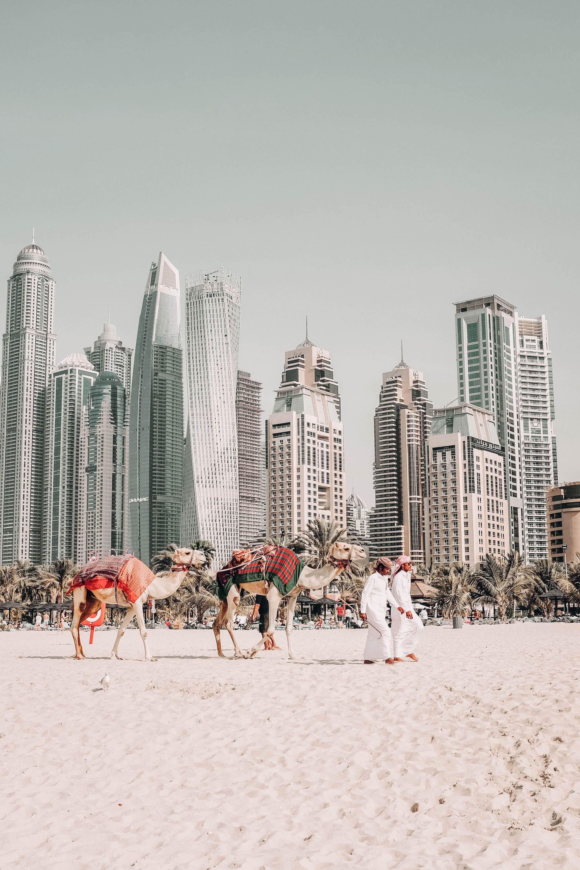 Eine Woche Dubai Urlaub In Der Stadt Der Superlative On A Budget Dubai Urlaub Reiseideen Und Dubai