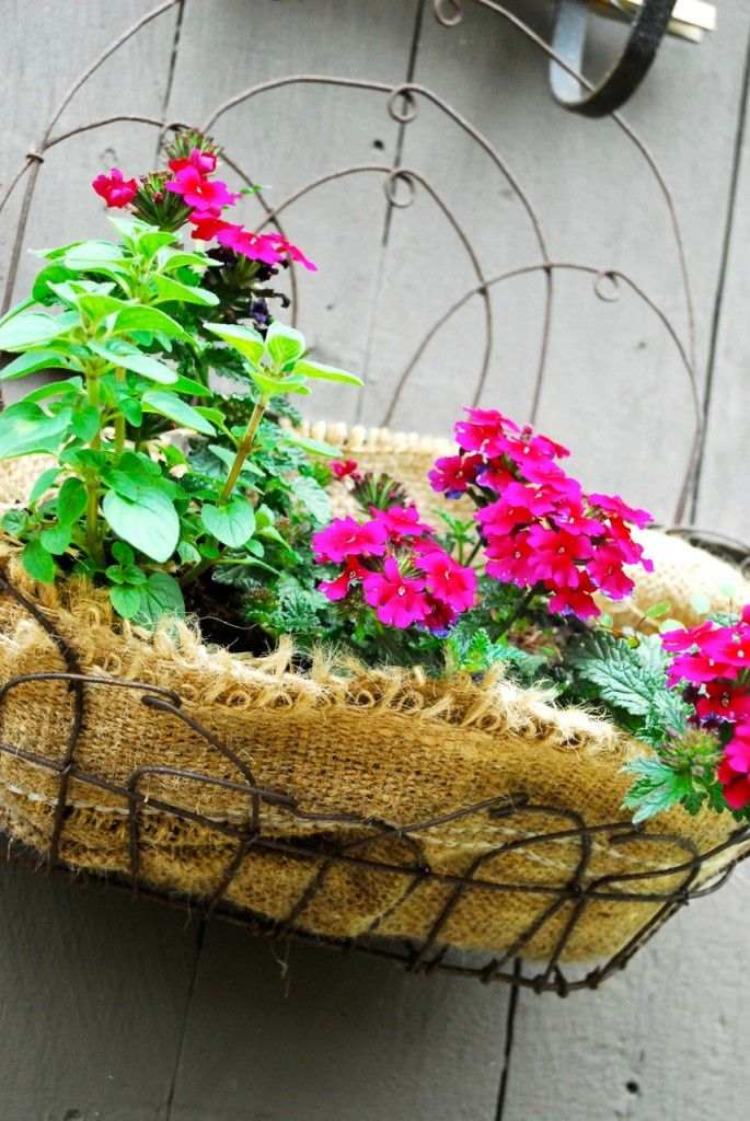 Instead Of Using Coconut Liners For Your Wire Planters You Can Use Burlap Fabric Or A Burlap Coffee Bean Sack Planting Flowers Burlap Outdoor Garden Projects