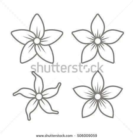 Jasmine Flower Sketch Flores Dibujadas A Mano Dibujos De Flores