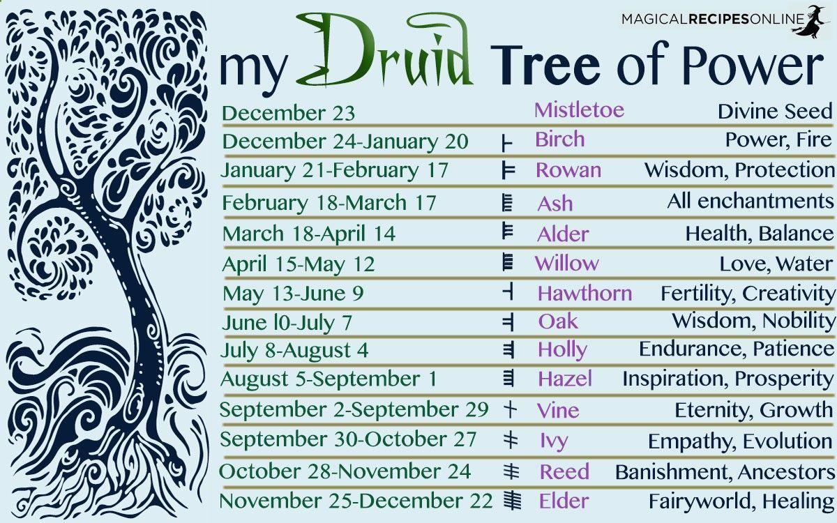 Druid Celtic Horoscope 21