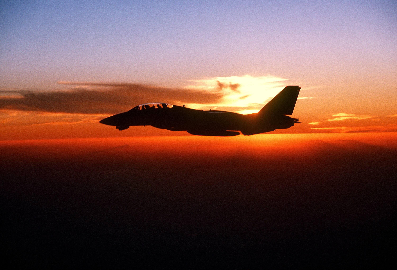 F 14 Tomcat Cruising At Sunset 戦闘機 軍用機 F14 トム キャット