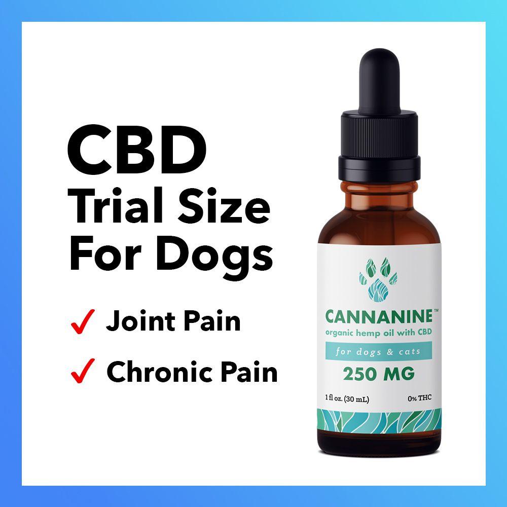 Special Offer! Cannanine™ Organic Full Spectrum CBD Oil