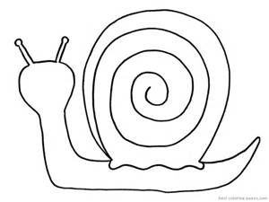 snail template bing images printables pinterest free