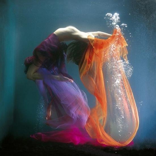 plasticidad de colores y del cuerpo