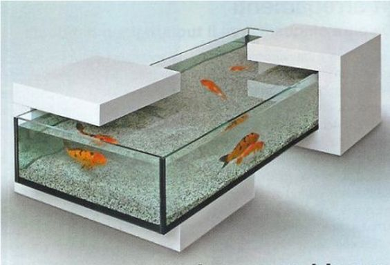 1000 Images About Fish Tanks On Pinterest Fish Tanks