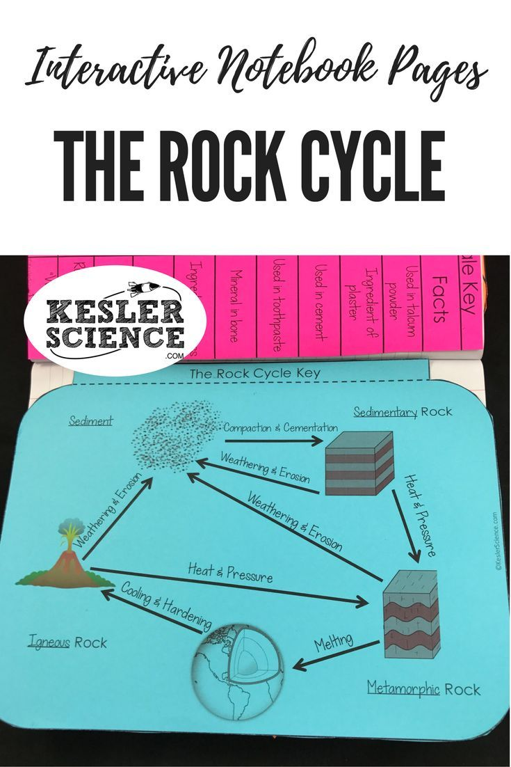 The Rock Cycle Flip Book Worksheets Label The Changes On A Diagram And Take Notes On Vocabula Interactive Science Notebook Interactive Notebooks Earth Science