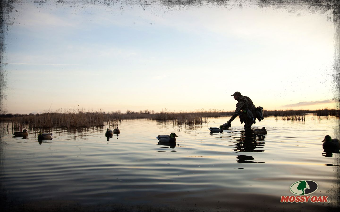 Free Duck Hunting Wallpaper 1440x900 For Other Sizes Visit