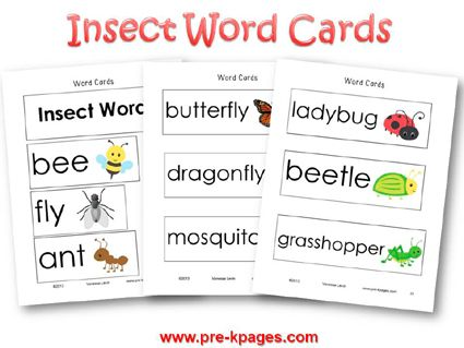 Insect Math Insects Theme Insects Preschool Bugs And Insects