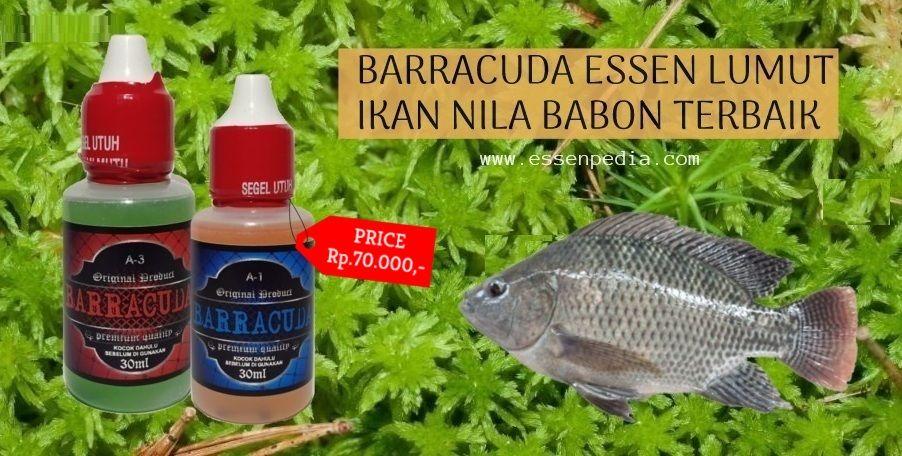 Essen Lumut Ikan Nila Babon Kualitas Terbaik Dari Essen Barracuda Yang Sudah Teruji Ampuh Dengan Aroma Khas Yang Dapat Menin Dish Soap Bottle Lumut Soap Bottle