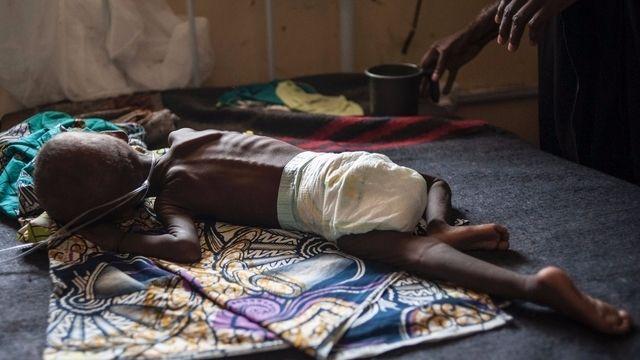 Les déplacés de Boko Haram meurent de faim
